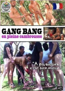 Gang Bang En Pleine Cambrousse