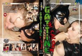 Gattine in Calore CentoxCento Streaming